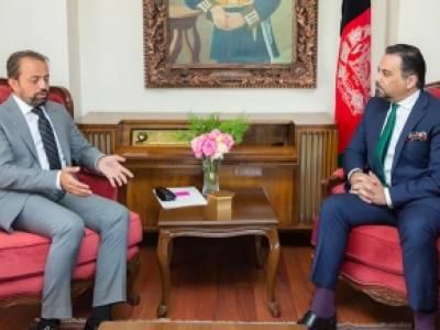 Deputy Foreign Minister Meets Turkish Ambassador
